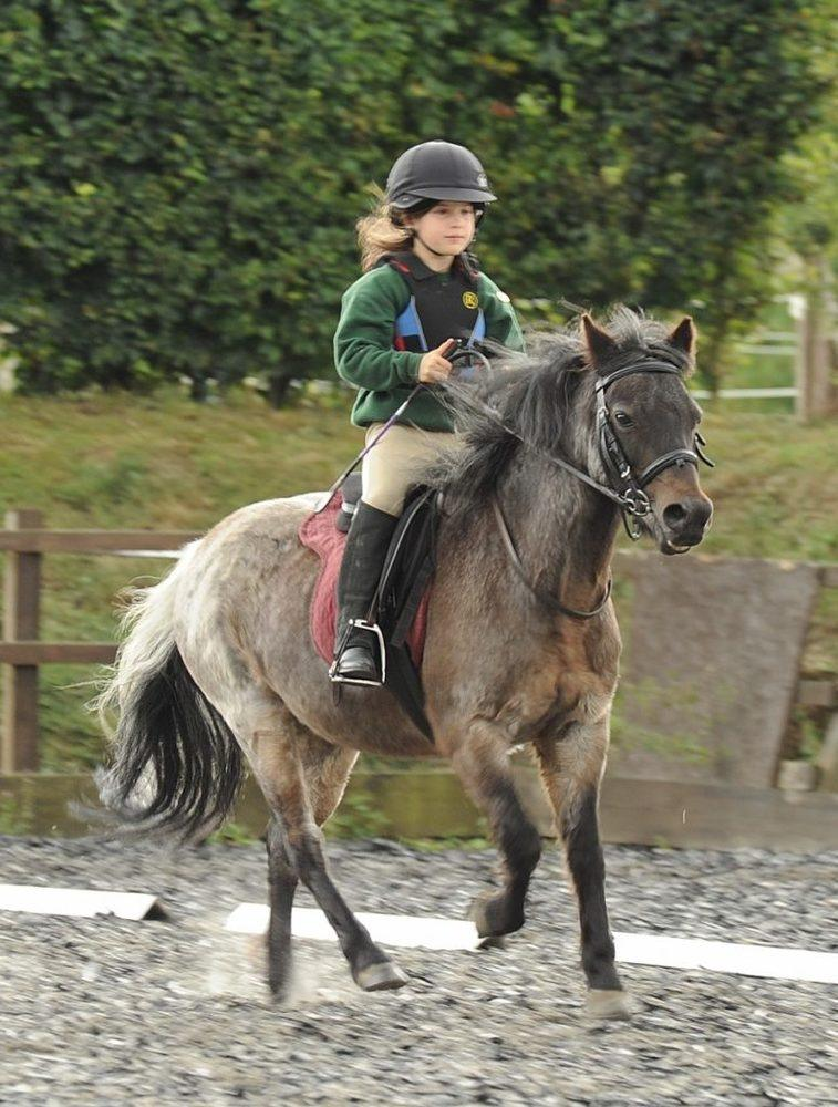 horse riding for children