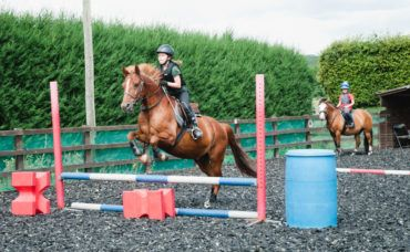 Show Jumping Clinic, Show Jumping Clinic