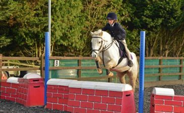 showjumping clinic