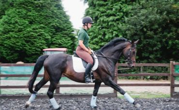 Understanding Dressage (Tests TBA), Understanding Dressage (Tests TBA)